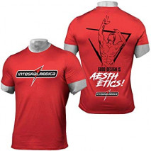 Camiseta IntegralTeam
